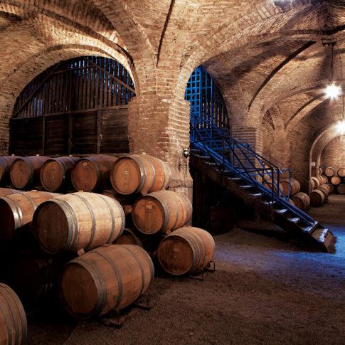 Carolina Wine Brands