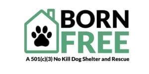 Born Free Pet Shelter Logo
