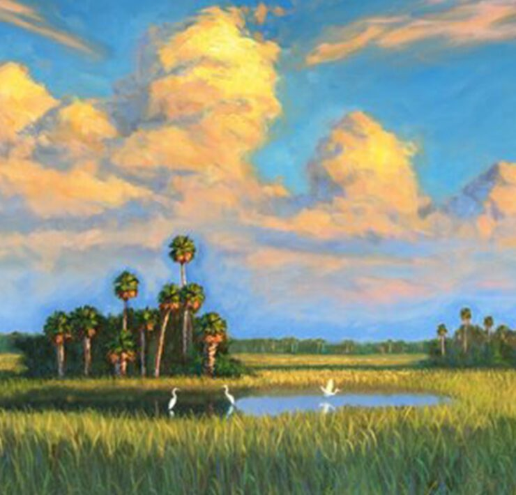 rsz tim forman everglades beauty oil on canvas 30x40 red new2