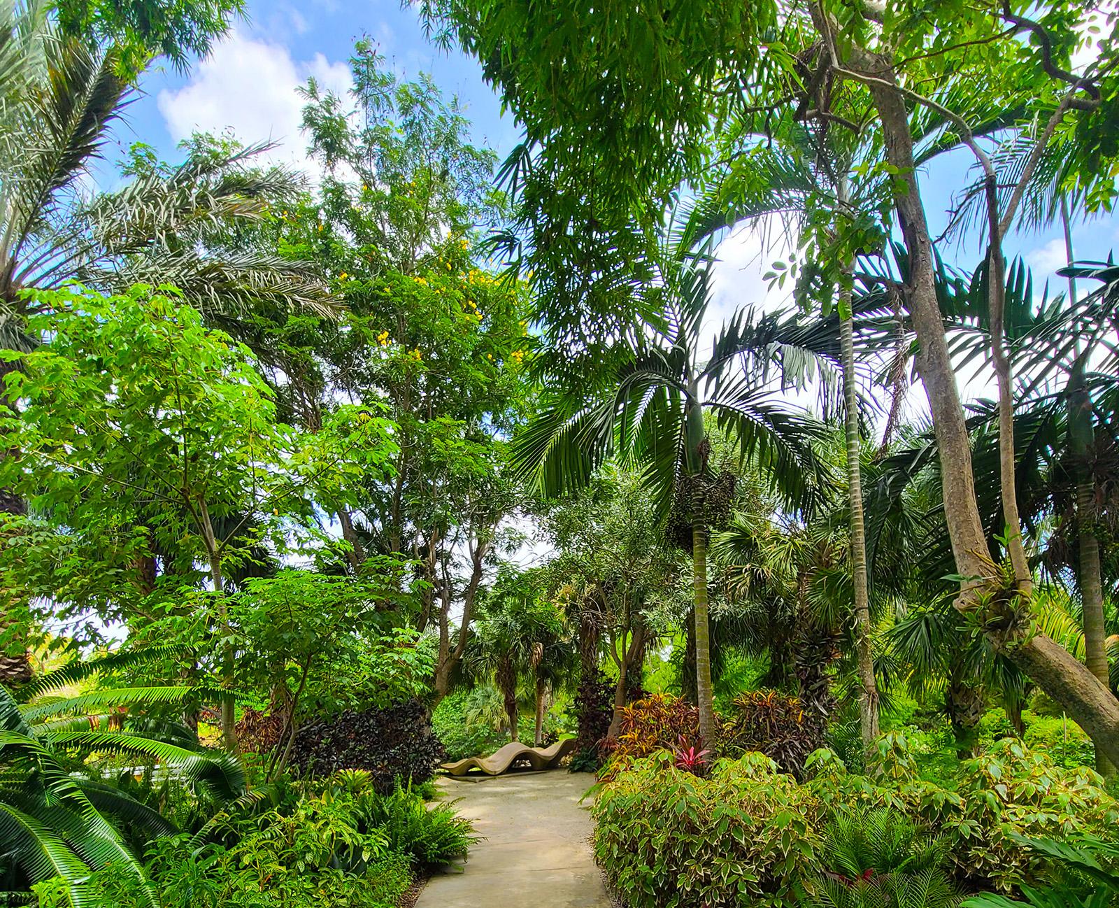 Mounts Botanical Garden (Photo by Melissa Carter)