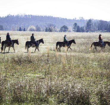 Horsebacking riding at Barnsley Resort in Northern Georgia